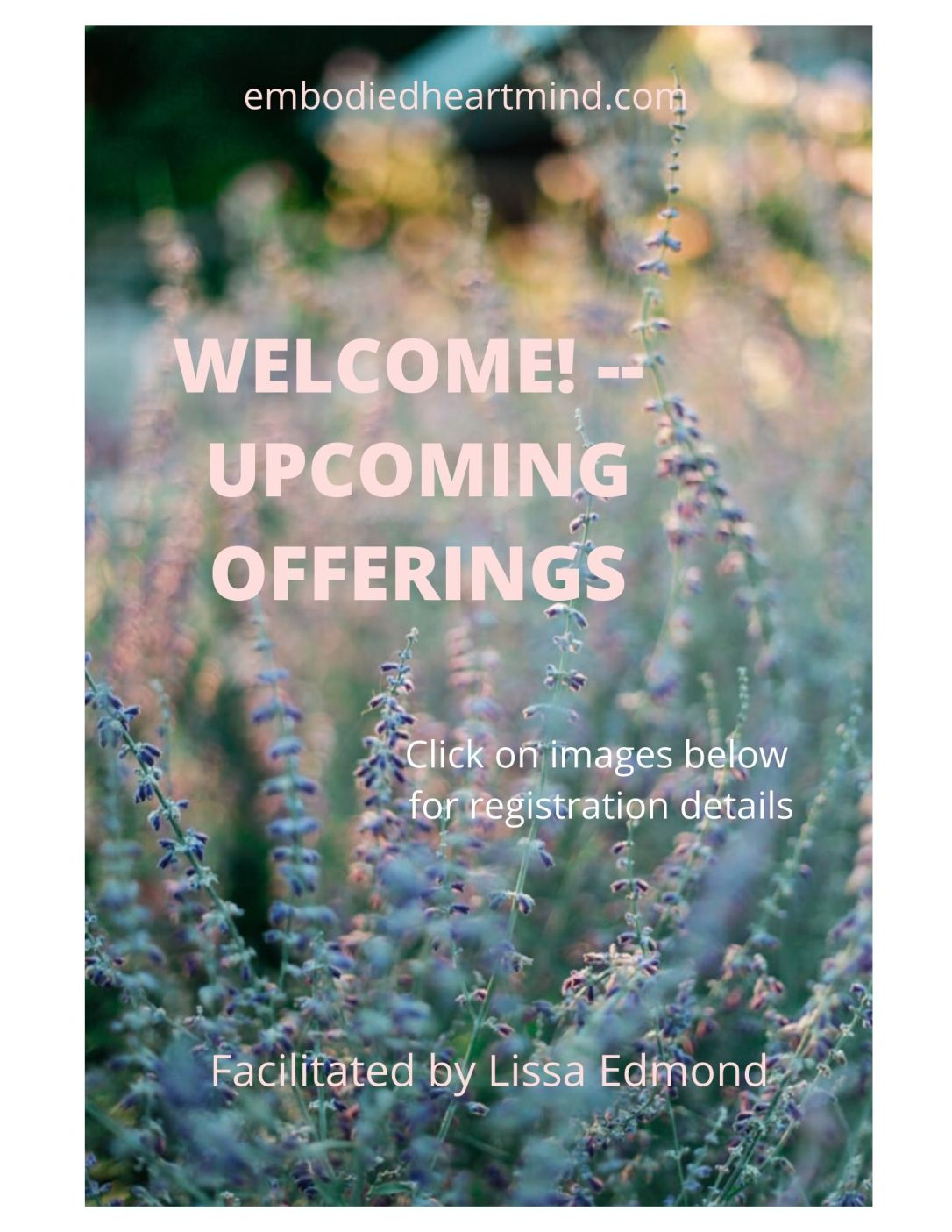 welcome -- upcoming offerings