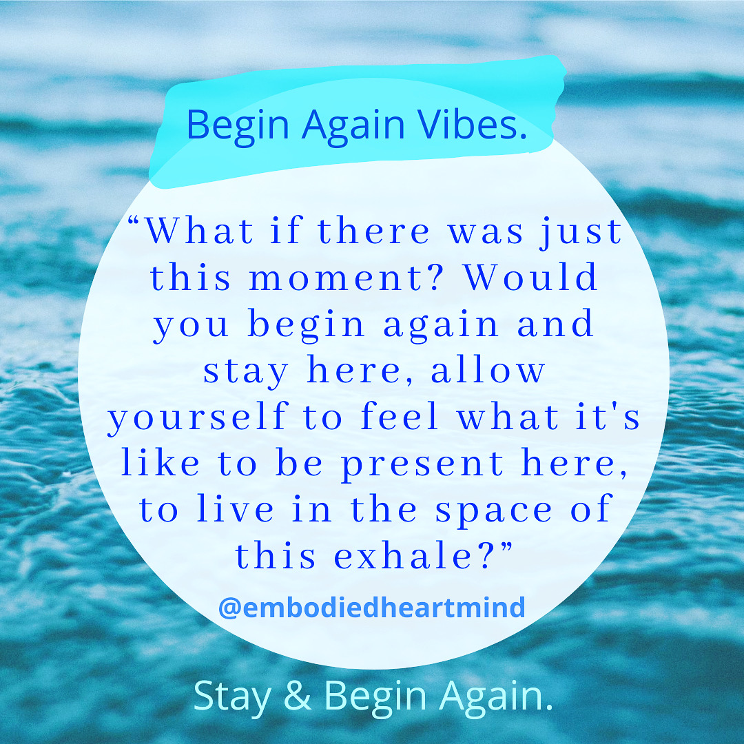 stay & begin again filt